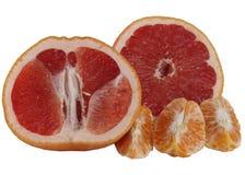 Grapefruits and Mandarines. Stock Photos