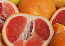 Grapefruits and Mandarines. Stock Images