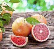 Grapefruits na drewnianym stole. obraz stock