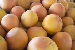 Grapefruits Stock Photography