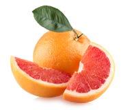Grapefruits Stock Image