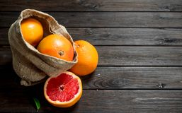 Grapefruits in an sack stock photography