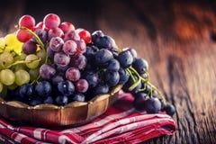 grapefruits Wiązka stubarwni winogrona w retro pucharze na starej dębowej zakładce obrazy royalty free