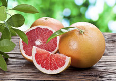 Grapefruits on a wooden table. stock photo