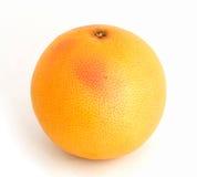 grapefrukt Royaltyfri Fotografi
