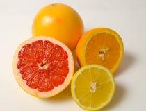 Grapefrukt, apelsin och citron royaltyfri bild