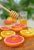 Grapefrukt, clementine, apelsin och honung Fotografering för Bildbyråer