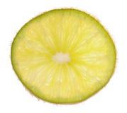 grapefrukt inom kiwi Royaltyfria Foton