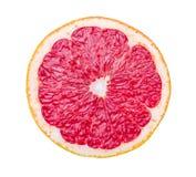 grapefrukt isolerad skivawhite Royaltyfri Bild