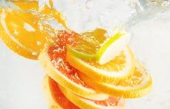 Grapefrukt, limefrukt och apelsin royaltyfri fotografi