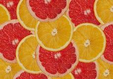 Grapefrukt- och apelsinbakgrund Arkivfoto