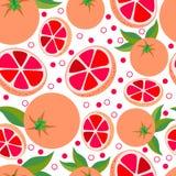 grapefrukt Sömlös bakgrund för vektor med grapefrukter Arkivfoton