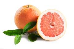 grapefrukt som isoleras på vit bakgrund arkivfoton