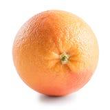 grapefrukt som isoleras på vit bakgrund royaltyfria bilder