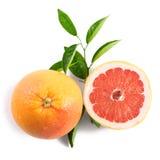 grapefrukt som isoleras på vit bakgrund Royaltyfri Fotografi
