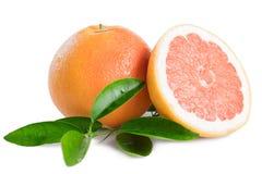 grapefrukt som isoleras på vit bakgrund arkivbild