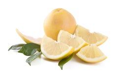 grapefrukter isolerade white Royaltyfria Bilder