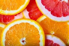 Grapefrukter och apelsinbakgrund Royaltyfria Foton