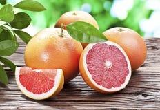 Grapefrukter på en trätabell. Royaltyfri Bild