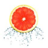 Grapefruktfärgstänk Royaltyfri Bild