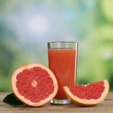 Grapefruktfruktsaft och nya grapefrukter bär frukt i sommar Royaltyfri Foto