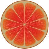 grapefruktfruktsaftskiva stock illustrationer