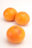 grapefruktgrupp Royaltyfri Foto