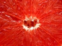grapefruktredtextur Fotografering för Bildbyråer