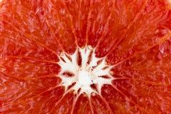 Grapefrukttextur royaltyfri bild