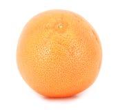 grapefruktyellow Royaltyfri Fotografi