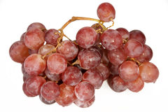Grapes. Brush, it is photographed on a white background Stock Images
