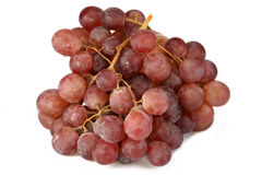 Grapes. Brush, it is photographed on a white background Royalty Free Stock Photography
