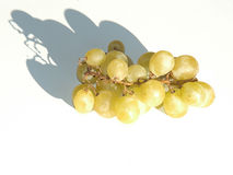 Grapes. On white background with shadow under lights Stock Images