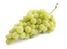 Grapes 11 Stock Photography