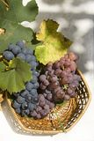 Grapes. Basket of grapes tight Royalty Free Stock Photography