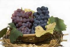 Grapes. Basket of grapes tight Royalty Free Stock Image