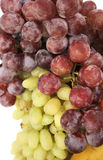 Grapes Stock Photos