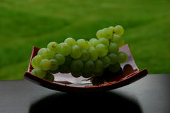 Grapes. Grape, fruit, wine, decoration royalty free stock photos