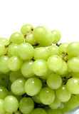 Grapes. Close up Royalty Free Stock Photo