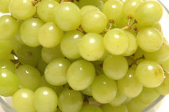 Grapes. Close up Royalty Free Stock Photography