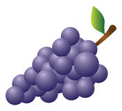 Grapes. Cartoon vector illustration of grapes Stock Image