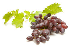 Grapes. Bunch of grapes with leaves on white background Stock Photos