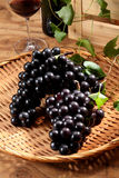 Grapes. Freshly harvested grapes in a basket Stock Photos