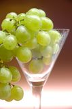 Grapes. In a glass Royalty Free Stock Photography
