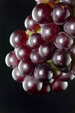 Grapes. A hand of grape in black background Stock Images