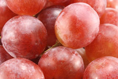 Grapes. Closeup fresh pink grapes,perfect background stock photography