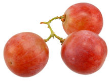 Grapes. Closeup fresh pink grapes on white stock photography
