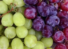 Grapes. Close up of green and red grapes Royalty Free Stock Image