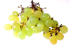 Grapes #2 Stock Images