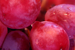 Grapes 2. Closeup of wet cold red juicy grapes Royalty Free Stock Photography